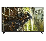 "Panasonic 65"" 4K UHD LED Smart TV Dual Tuner"