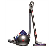 Dyson Cinetic Big Ball Animal Plus